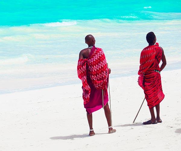 Rejser til Afrika